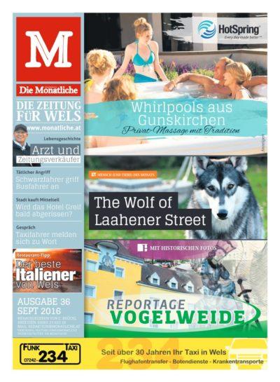 Die Monatliche – Ausgabe 36